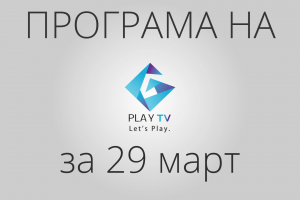 programa_29timart